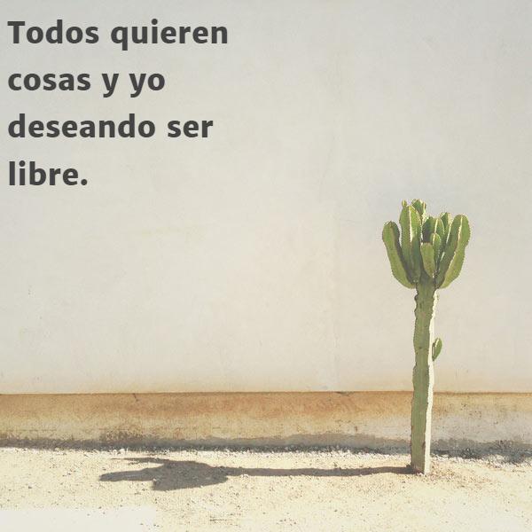 Frases para Reflexionar - Todos quieren cosas y yo deseando ser libre.
