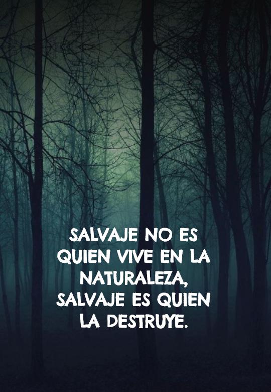 Frases sobre la Naturaleza - Salvaje no es quien vive en la naturaleza, salvaje es quien la destruye.