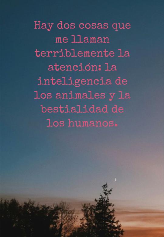 Frases sobre la Naturaleza - Hay dos cosas que me llaman terriblemente la atención: la inteligencia de los animales y la bestialidad de los humanos.