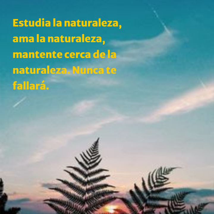 Frases sobre la Naturaleza - Estudia la naturaleza, ama la naturaleza, mantente cerca de la naturaleza. Nunca te fallará.