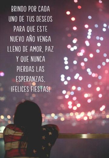 Frases de Deseos - Brindo por cada uno de tus deseos para que este nuevo año venga lleno de amor, paz y que nunca pierdas las esperanzas.  ¡Felices Fiestas!