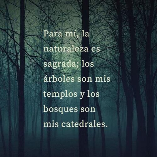 Frases sobre la Naturaleza - Para mí, la naturaleza es sagrada; los árboles son mis templos y los bosques son mis catedrales.