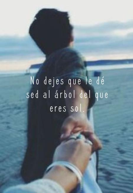 Frases de Amor - No dejes que le dé sed al árbol del que eres sol.