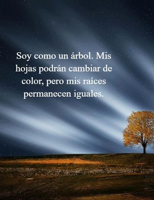 Frases de Motivacion - Soy como un árbol. Mis hojas podrán cambiar de color, pero mis raíces permanecen iguales.