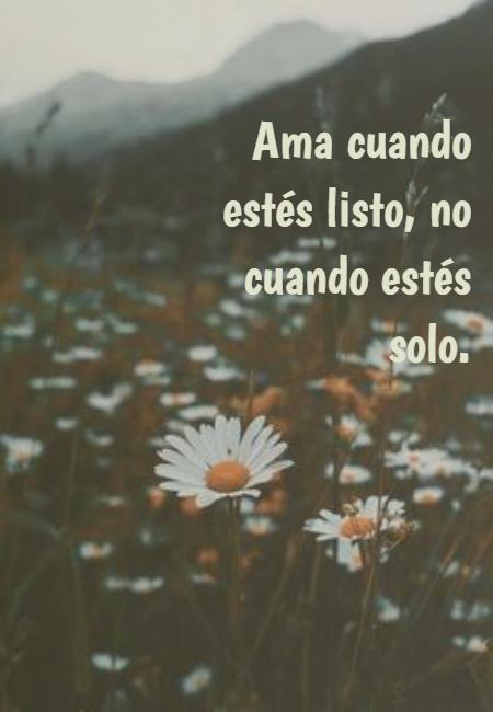 Frases de Amor - Ama cuando estés listo, no cuando estés solo.