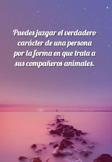 Frases de Animales - Puedes juzgar el verdadero carácter de una persona por la forma en que trata a sus compañeros animales.