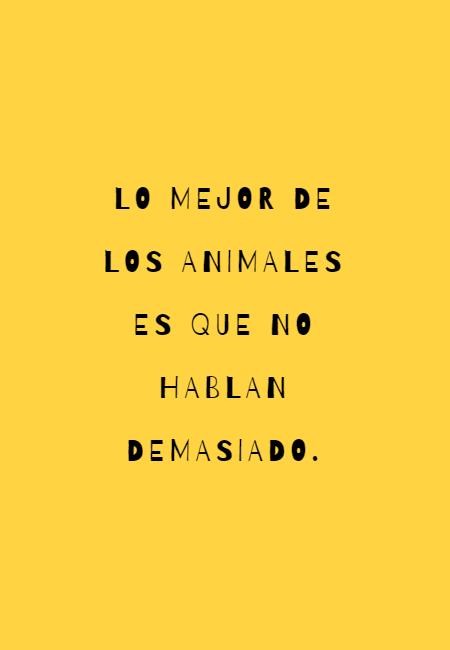 Frases de Animales - Lo mejor de los animales es que no hablan demasiado.
