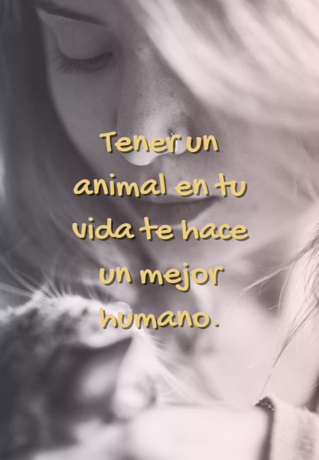 Frases de Animales - Tener un animal en tu vida te hace un mejor humano.