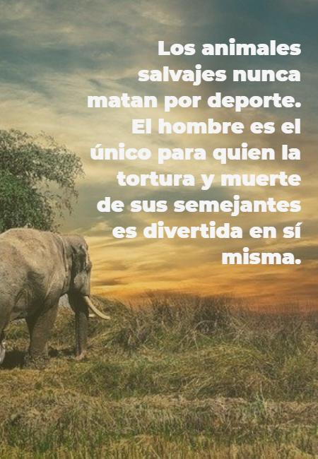 Frases de Animales - Los animales salvajes nunca matan por deporte. El hombre es el único para quien la tortura y muerte de sus semejantes es divertida en sí misma.